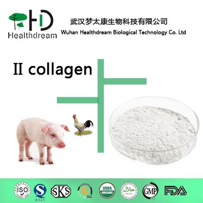 supply Collagen Type II(Edible Level)