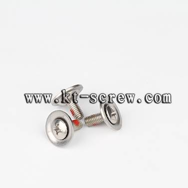 Stainless Steel special machine screw, used for ski boot