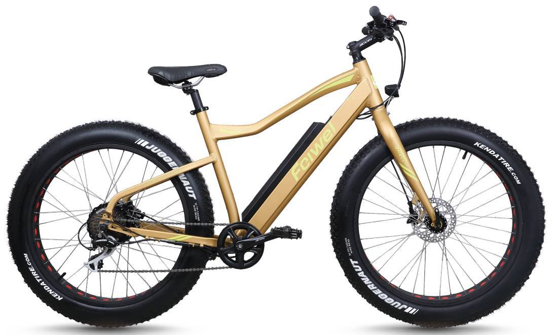 Far tyre mountain electric bike (FR-TDB10Z-3)