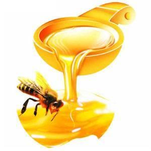 Chinese Pure Nature Bee Honey