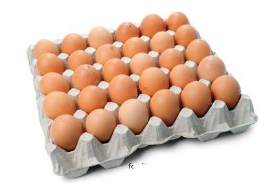 Brown Eggs Producers, White Shell Egg Manufactures Tamil Nadu India