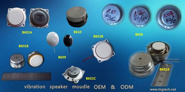 vibration speaker and vibration moudle