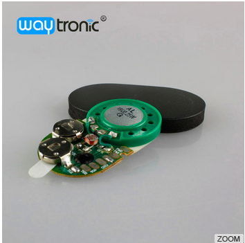 Light Sensor Activated Pre-recorded Sound Module with Plastic Casing