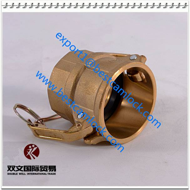 High Quality Brass Camlock Coupling Type D