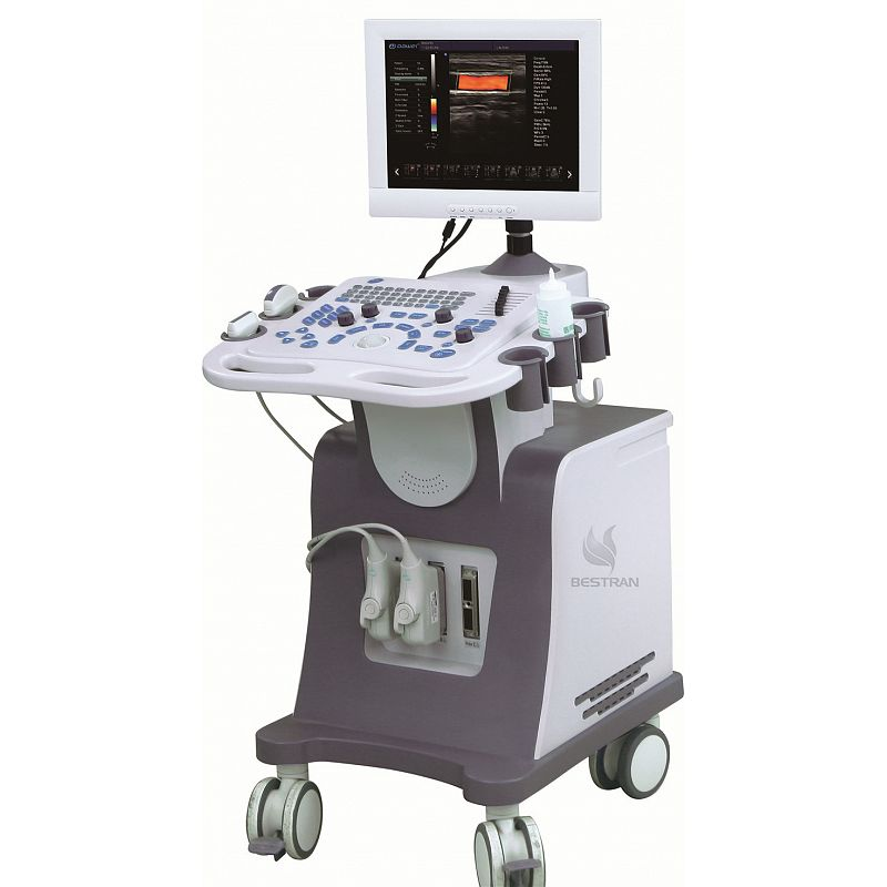 2D Ultrasound Diagnostic System