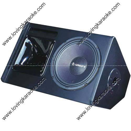 2Way 200W 10 Stage Monitor Speaker