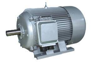 Y series asynchronous motor