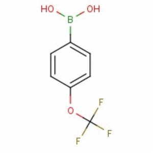 139301-27-2 4-Trifluoromethoxyphenylboronic acid