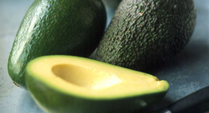 Wholesale Fresh Avocado from SA - High Standard - Low Price