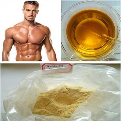 Injectable Anabolic Steroids Finaplix CAS 10161-34-9 Trenbolone Acetate 100mg / ml