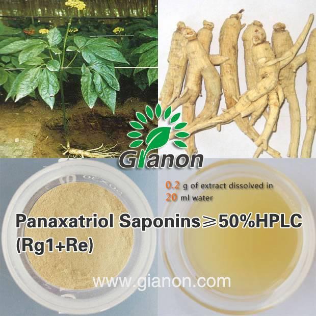 The Panaxatriol Saponins