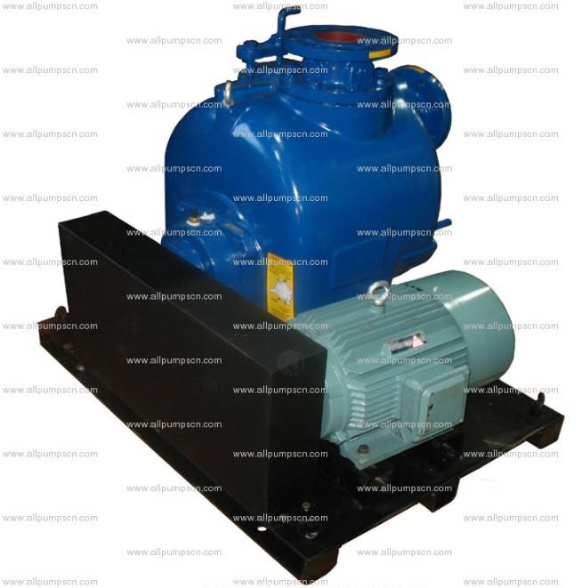 P Series Self-priming Non-clogging Centrifugal Sewage Pump