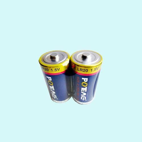 LR20 Alkaline battery