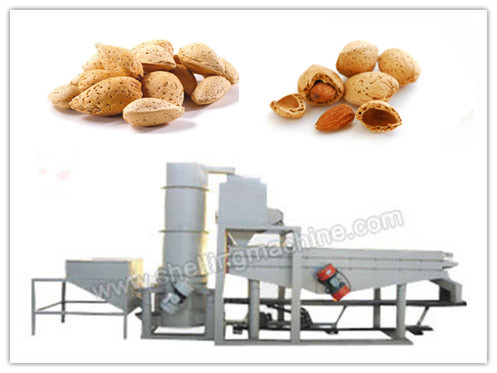 (300-500 kg/h) Almond Cracking & Shelling Machine