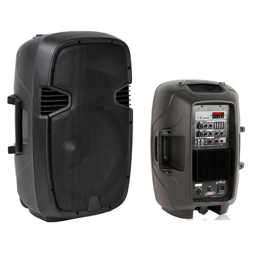 12-inch two-way PA speaker box Professional Speaker