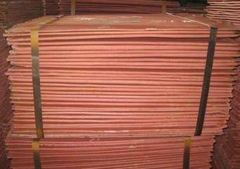 REQUIRE COPPER CATHODE URGENT