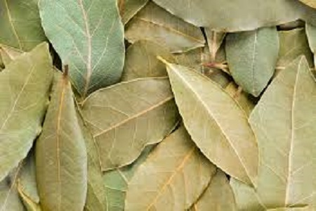 sell dried bay leaves