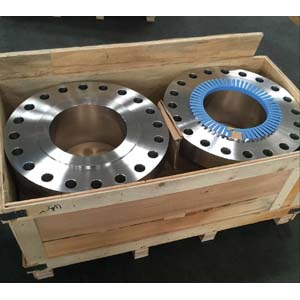 ASTM A182 Welding Neck Flange, 10 Inch (DN 250), 900LBS, SCH80, ASTM A182 F304L, RF Ends