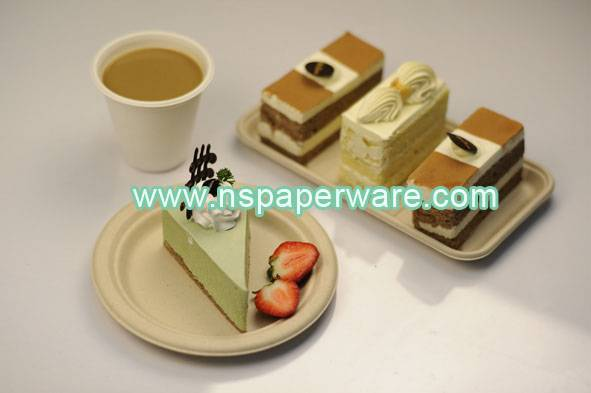 disposable bagasse paper plate eco-friendly