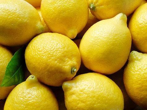Export Fresh Lemon