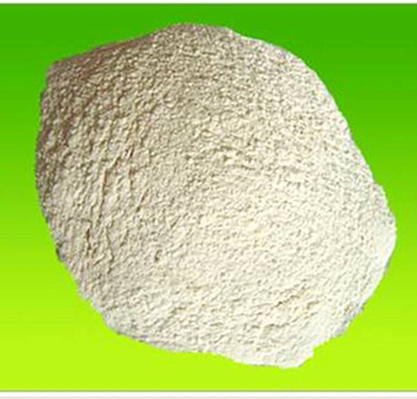 Viscosifier Xanthan gum