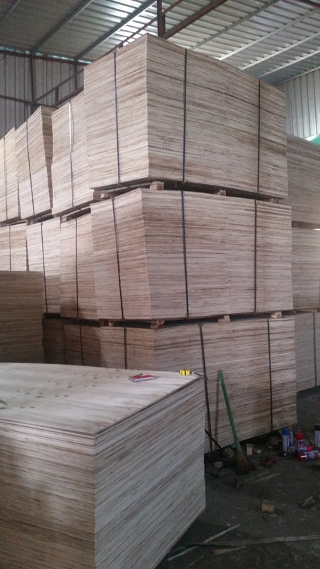 SELLING HIGHT QUALITY PACKING PLYWOOD