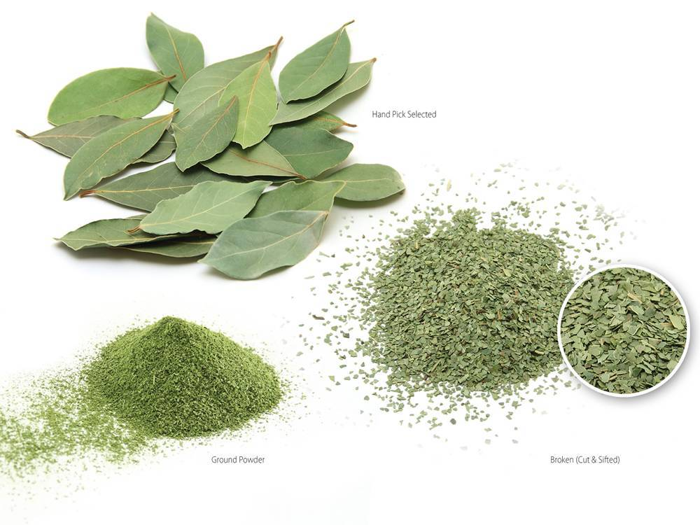 Bay Leaves Oregano