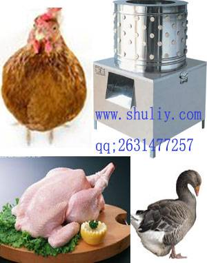 Chicken blanching and plucking machine, poultry defeather machine/poultry feather plucker/unhairing