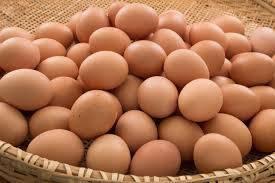 Sell Farm Fresh Eggs