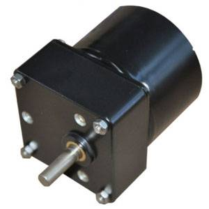 63TKYJ permanent magnet decelerating synchronous motor