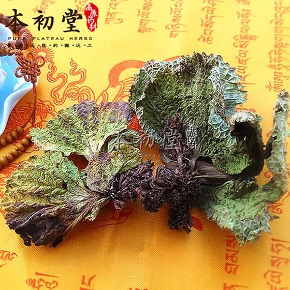 Lamiophlomis rotata Kudo/rotating Jerusalem sage/Radix Lamiophlomidis rotatae from Qinghai province.