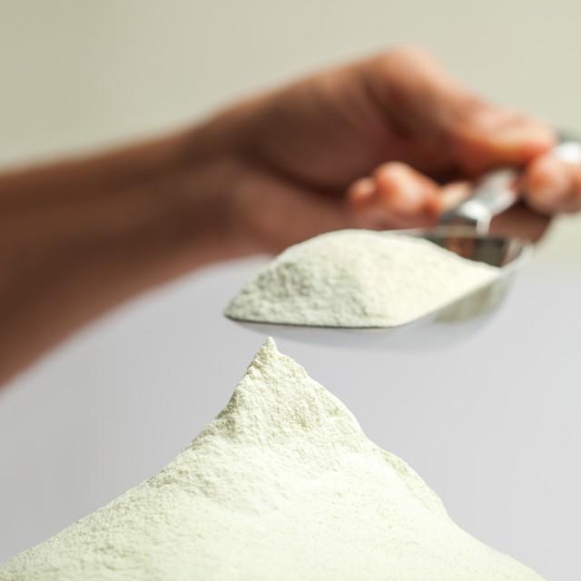 Camel Milk Powder