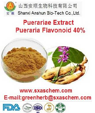 herb medicine pure pueraria p.e