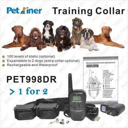 :Rechargeable and Waterproof Remote Training Shock Collar for 2 dogs