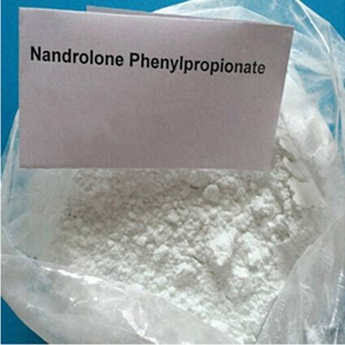 Injectable Anabolic Steroids Nandrolone Phenylpropionate 200mg/ml CAS 62-90-8