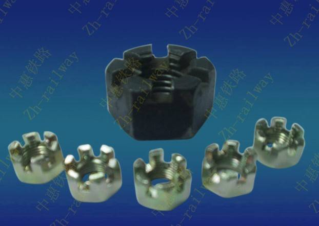 Hex Slotted Nuts (ZH-081)