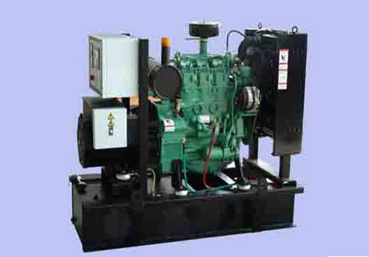 D Series Generating Set