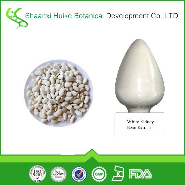 Factory Supply Lose weight White Kidney Bean Extract