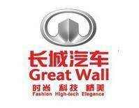Great Wall auto spare parts - full series