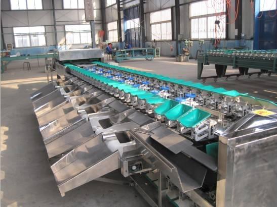 stainless steel kiwi grading machine,double lane fruit grading machine