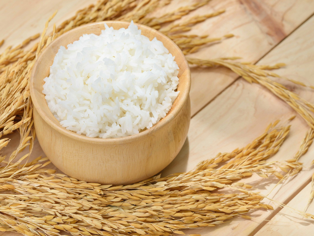 BEST SELLING- JAPONICA RICE 5% BROKEN-RICE FOR HEATH- EMAIL: SALES4 AT VINARICE DOT VN