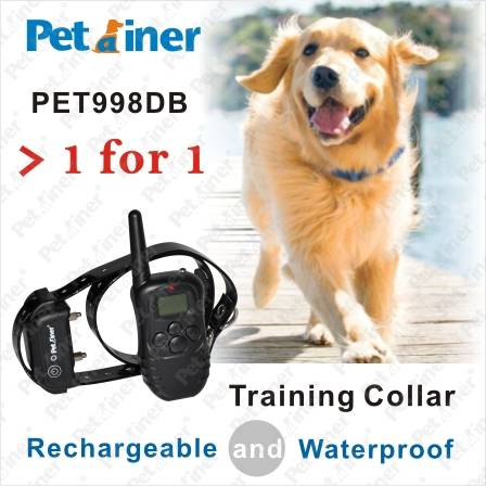 300M Remote Pet Training Collar with Rechargeable and Waterproof