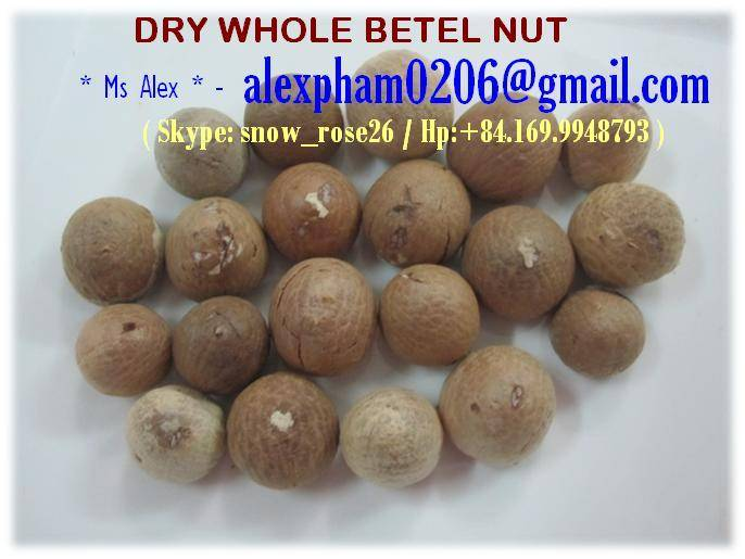 Dried Whole Betel Nut (Areca Nut) Supari, White Betel Nut