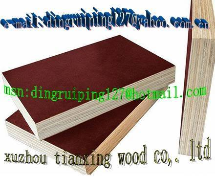 supply-film faced plywood from china