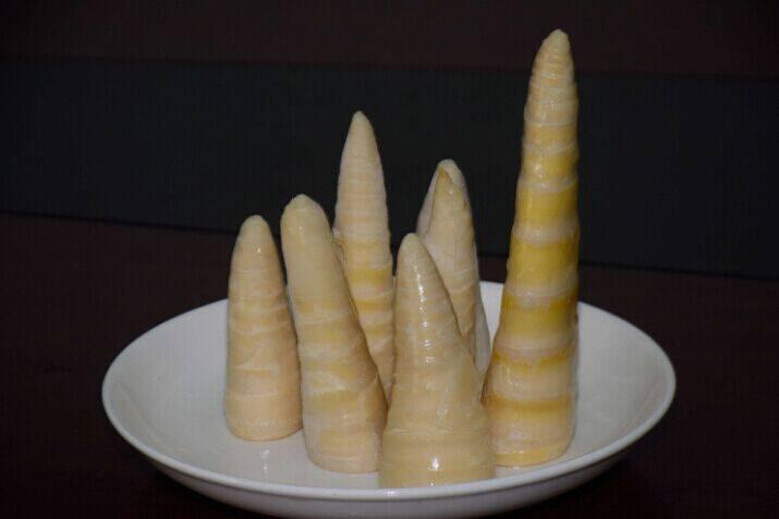 sell Frozen asparagus