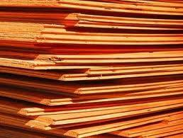 Sell plywood SY-19