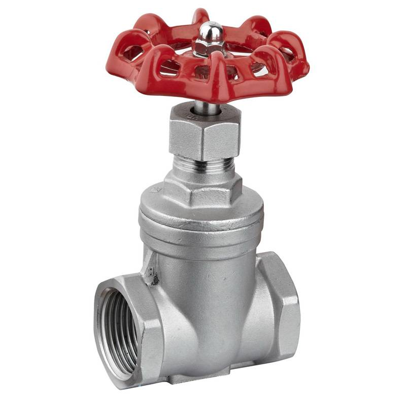 SS304 female thread gate valve,1/2FNPT,200psi