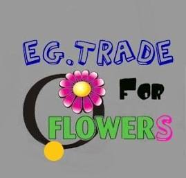 fresh cut flowers from Egypt from EG.Trade co. for flowers with good prices