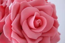 Rose Essential Oil Original