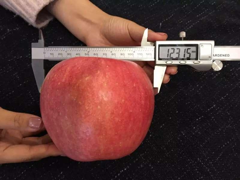 Fuji Selenium Apple